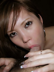 A picture collection of various concupiscent Oriental hotties sucking pecker